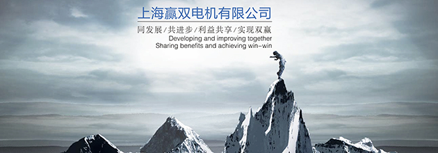 上海赢双电机有限公司
